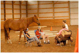 equine assisted therapy program (EAT)